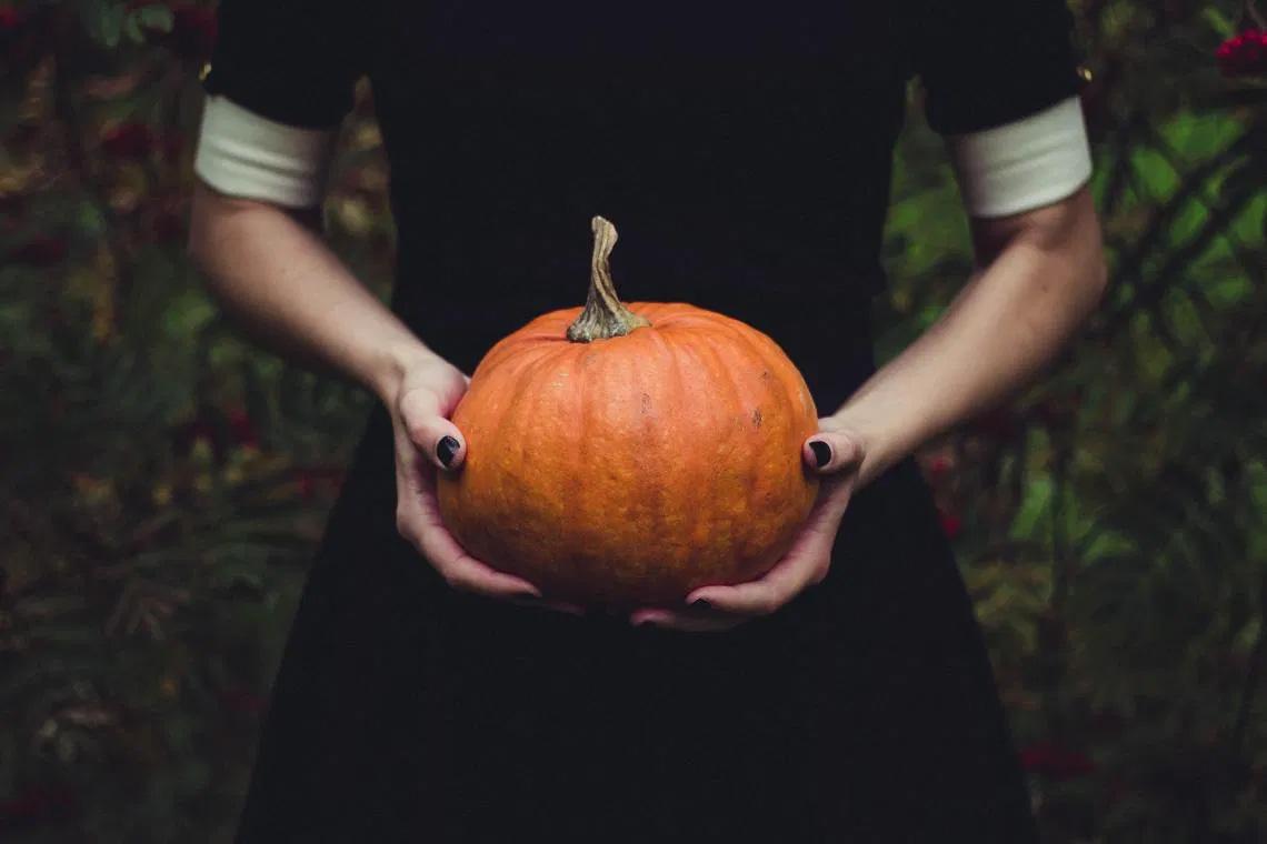 Der-Herbst-kommt